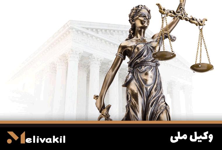 وکیل ملی